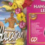Hawaii Lei